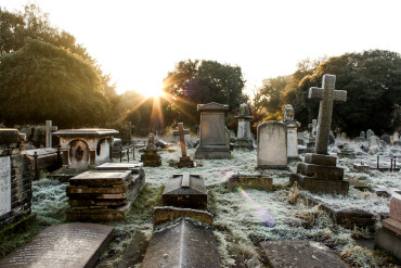 Winter morning at Brompton Cemetery